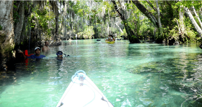 Kayaking Central Florida