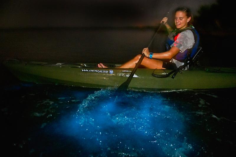 Best things to do in Orlando - Bioluminescent kayaking