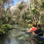 Explore Central Florida on a Clear Kayak Adventure