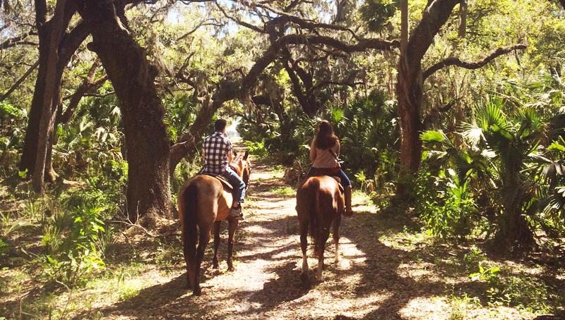 Hidden Palms Ranch private trail rides in Sanford FL