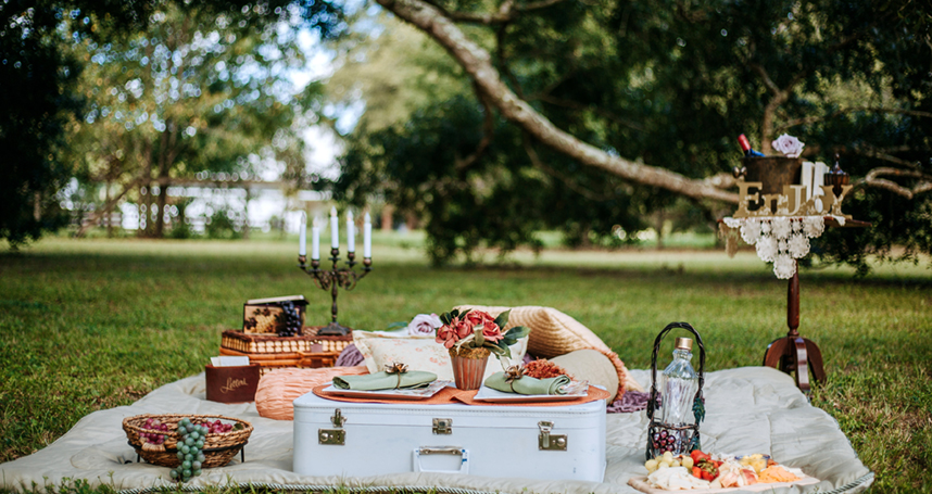 Gourmet Picnic in Orlando for Two with Our Dream Date