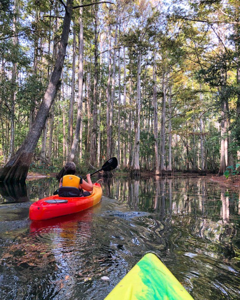 Kayaking Shingle Creek at The Paddling Center in Kissimmee