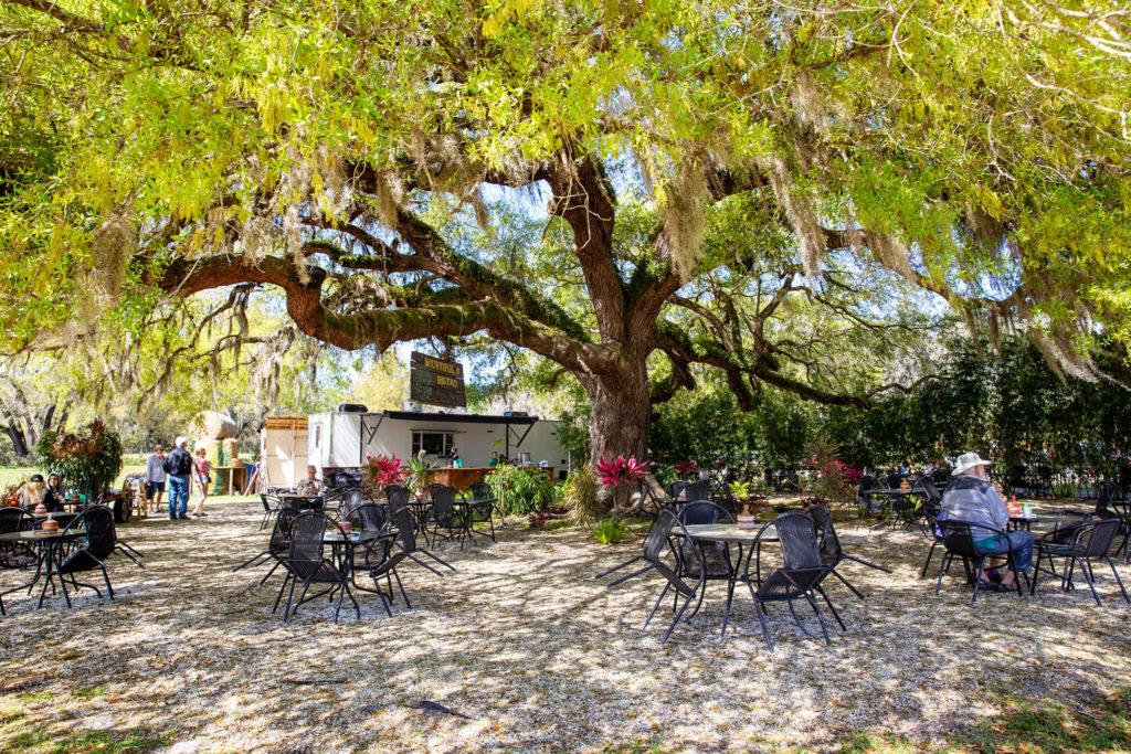 Lunch at Bountiful Farms Bistro - 100 Orlando Date Night Ideas